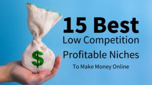 Best Low Competition Profitable Niches